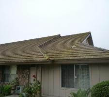 roof-sasha-109-copy-2